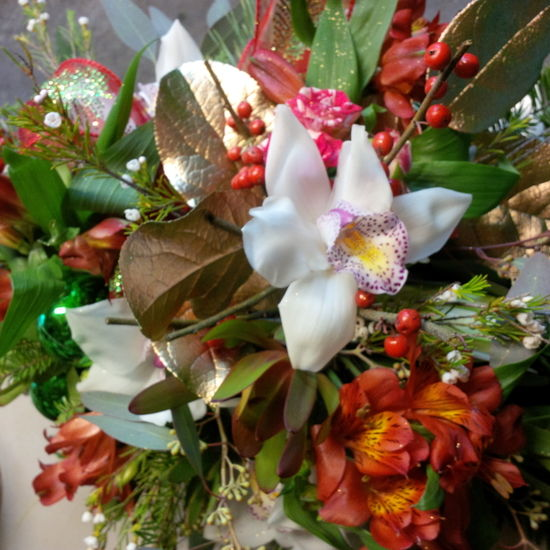 The Floral Revelry Florist - Orchid Christmas