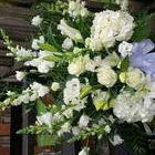 Flower arrangement titled A Beautiful Commanding Presence