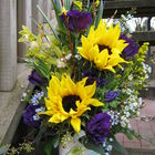 Flower arrangement titled Congratulations in blue (or pink)