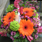 Flower arrangement titled Bountiful Gerberas