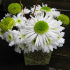 Flower arrangement titled Simply White Expressions
